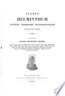 Icones helminthum, Squamodisc, Icones helminthum