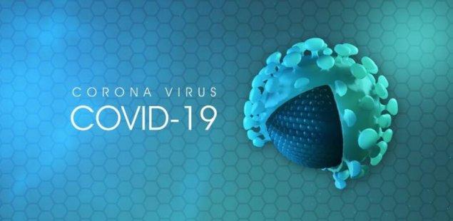 tratamentul virusilor și paraziților)