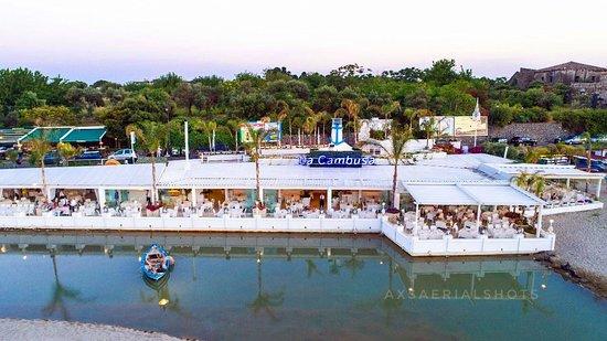 forum pentru giardini naxos