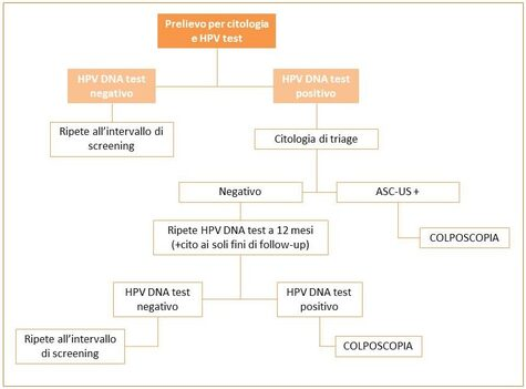 Human papilloma virus (HPV)   Bioclinica Dna- papilloma virus negativo