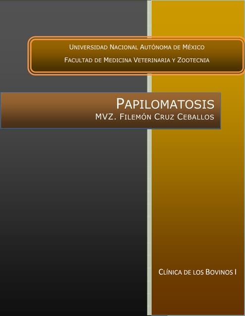 que significa papilomatosis)
