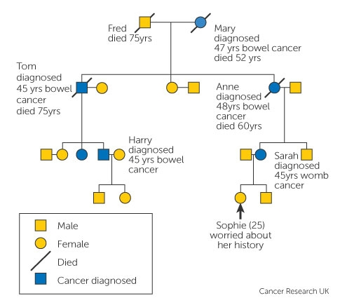 familial cancer explained)
