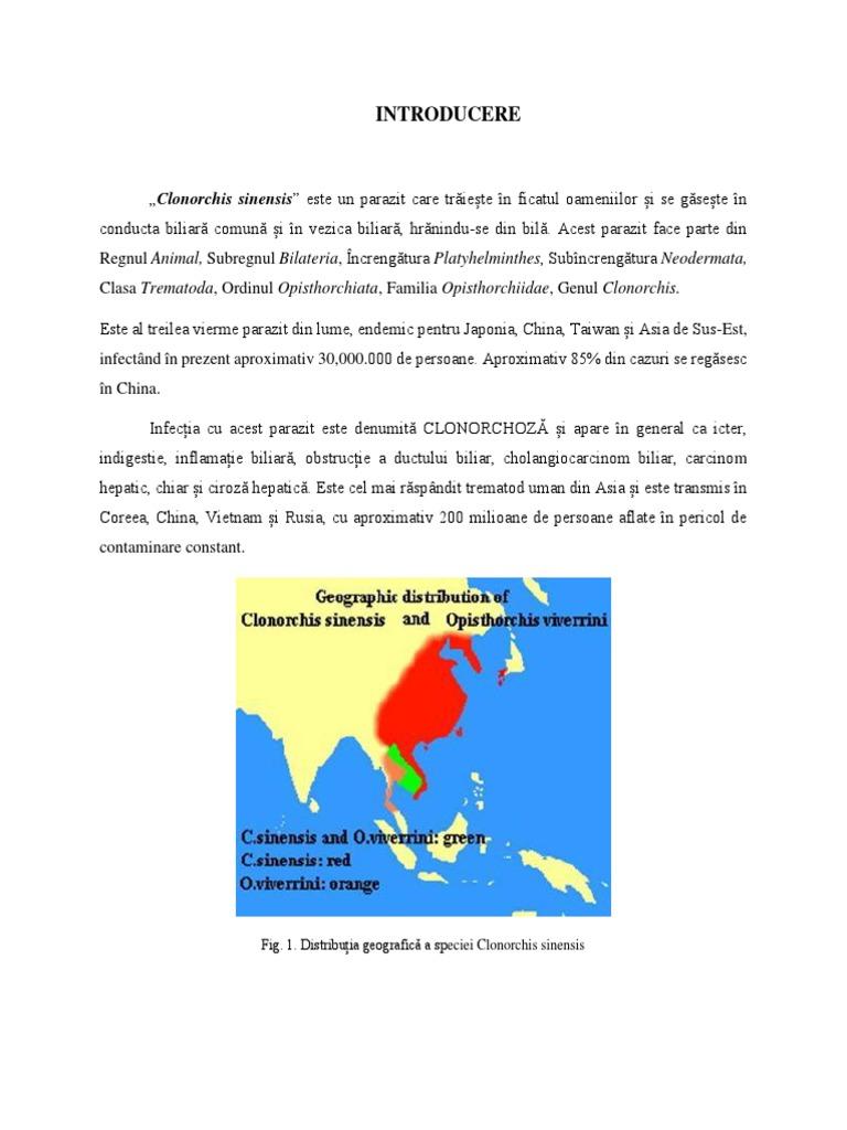 secțiunea 1 prezentare generală a platyhelminthes)