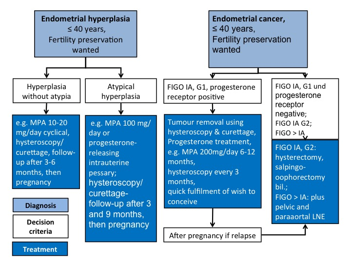 endometrial cancer on pregnancy)