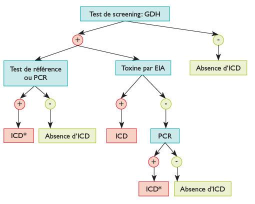 CLOSTRIDIUM DIFFICILE, Recherche toxine c difficile