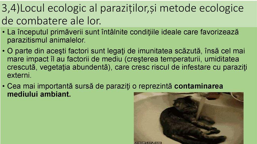 probleme parazitare)