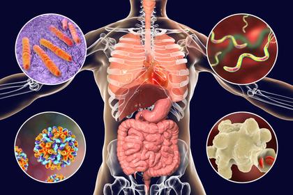 vaccino papilloma virus per l uomo