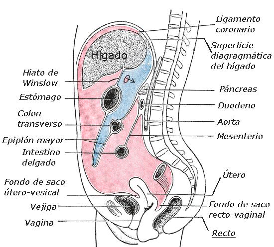 cancer peritoneal en hombres