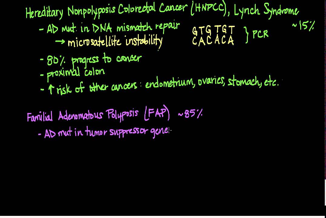 cancer colorectal nonpolyposis)