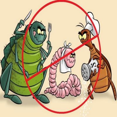 sta su paraziti u organizmu)