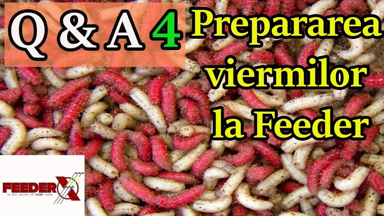 preparate pentru viermi pentru prevenirea oamenilor)
