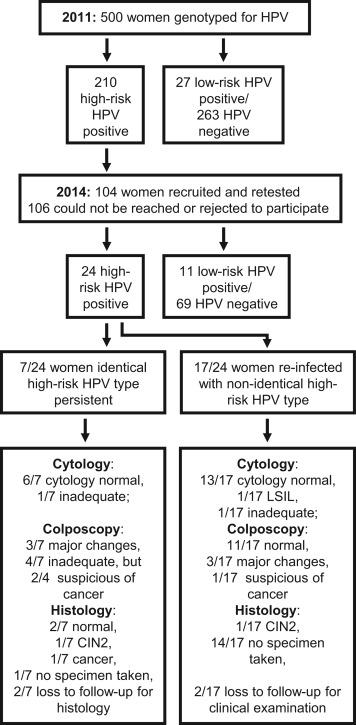 Hpv treatment precancerous cells,