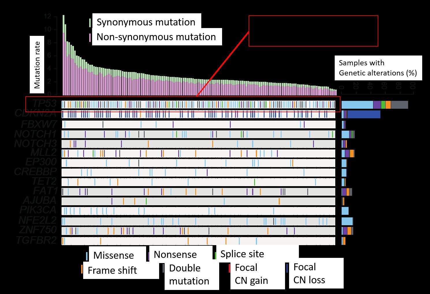 cancer genetic discovery revizuirea medicamentelor parazite cu spectru larg