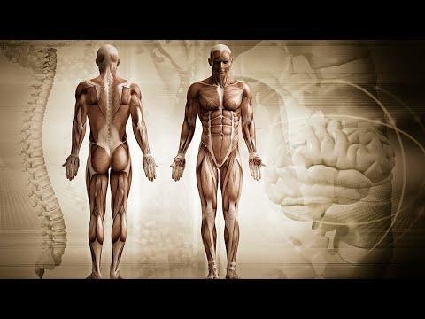 Papilloma virus cause psicosomatiche