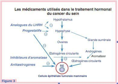 cancer hormonal traitement