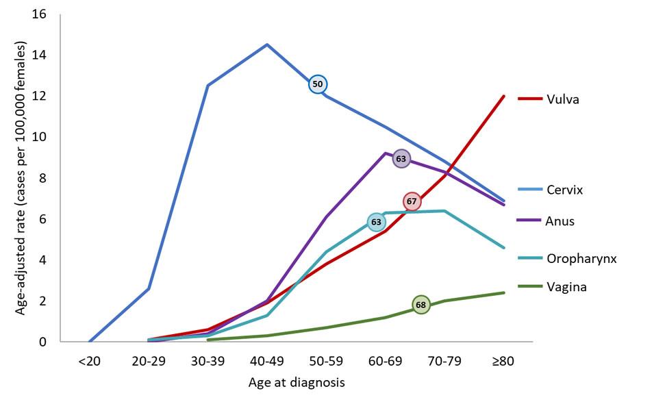 Hpv cancer statistics.