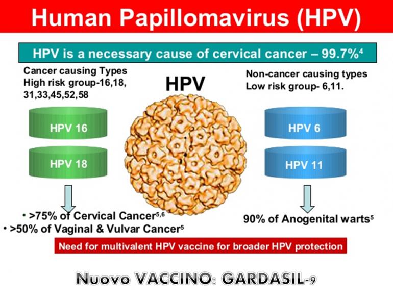 papilloma virus vaccinazione hpv treatment gardasil