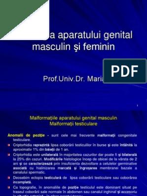 Veruci genitale (condiloame) – medicamente și remedii naturiste
