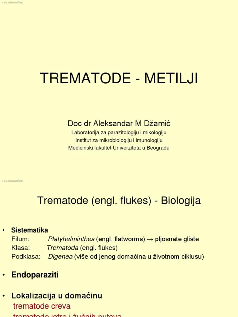 helminti la copii simptome și tratament)