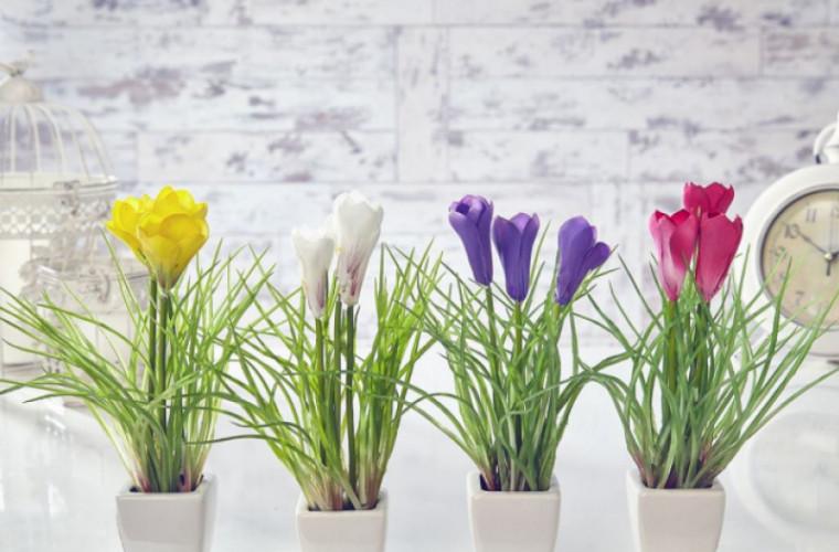 paraziți de flori