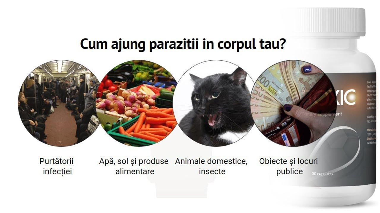 reteta pentru eliminarea parazitilor din corpul uman)