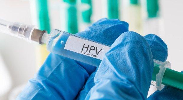 Vaccinazione contro il papilloma virus( hpv), Vaccino papilloma virus e gravidanza