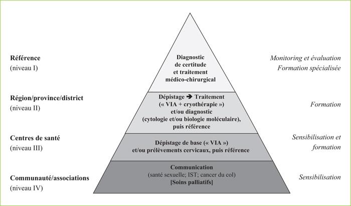 papillomavirus niveau 3 aspirația duodenală a giardiei