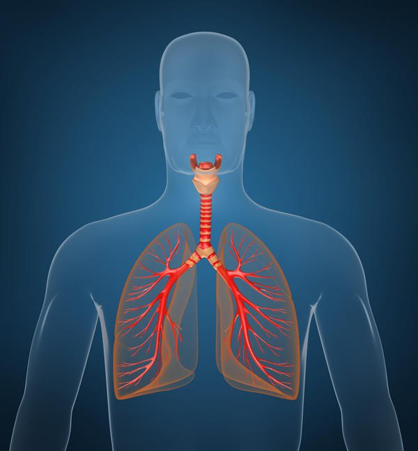 inelat respiratorii