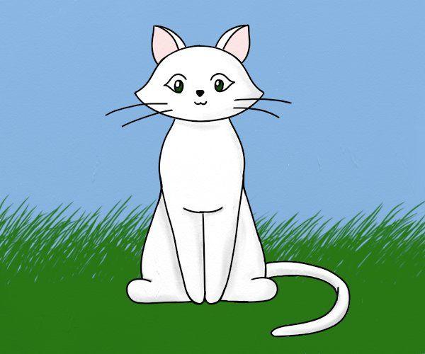 ce sa dai pisica viermilor?)