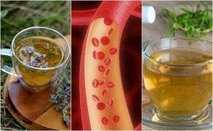 ceai pt curatarea vaselor de sange