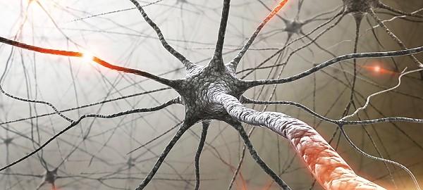 tratament cu viermi cu scleroză multiplă
