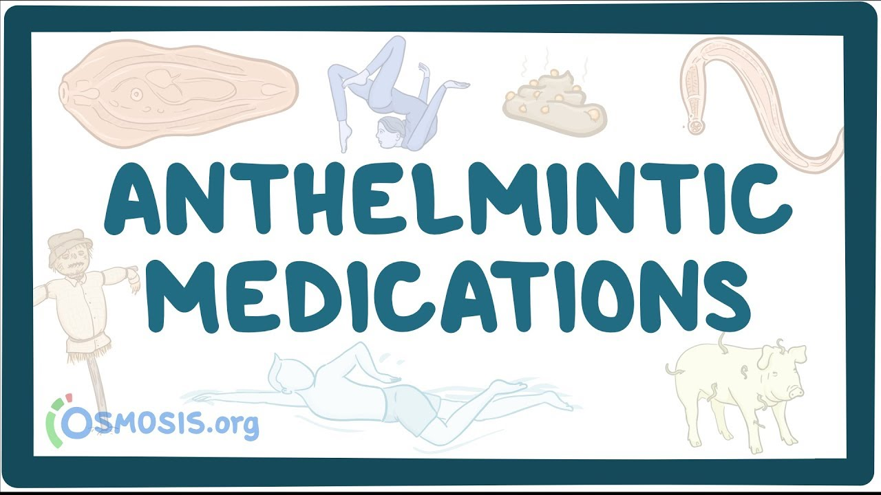anthelmintic therapy definition