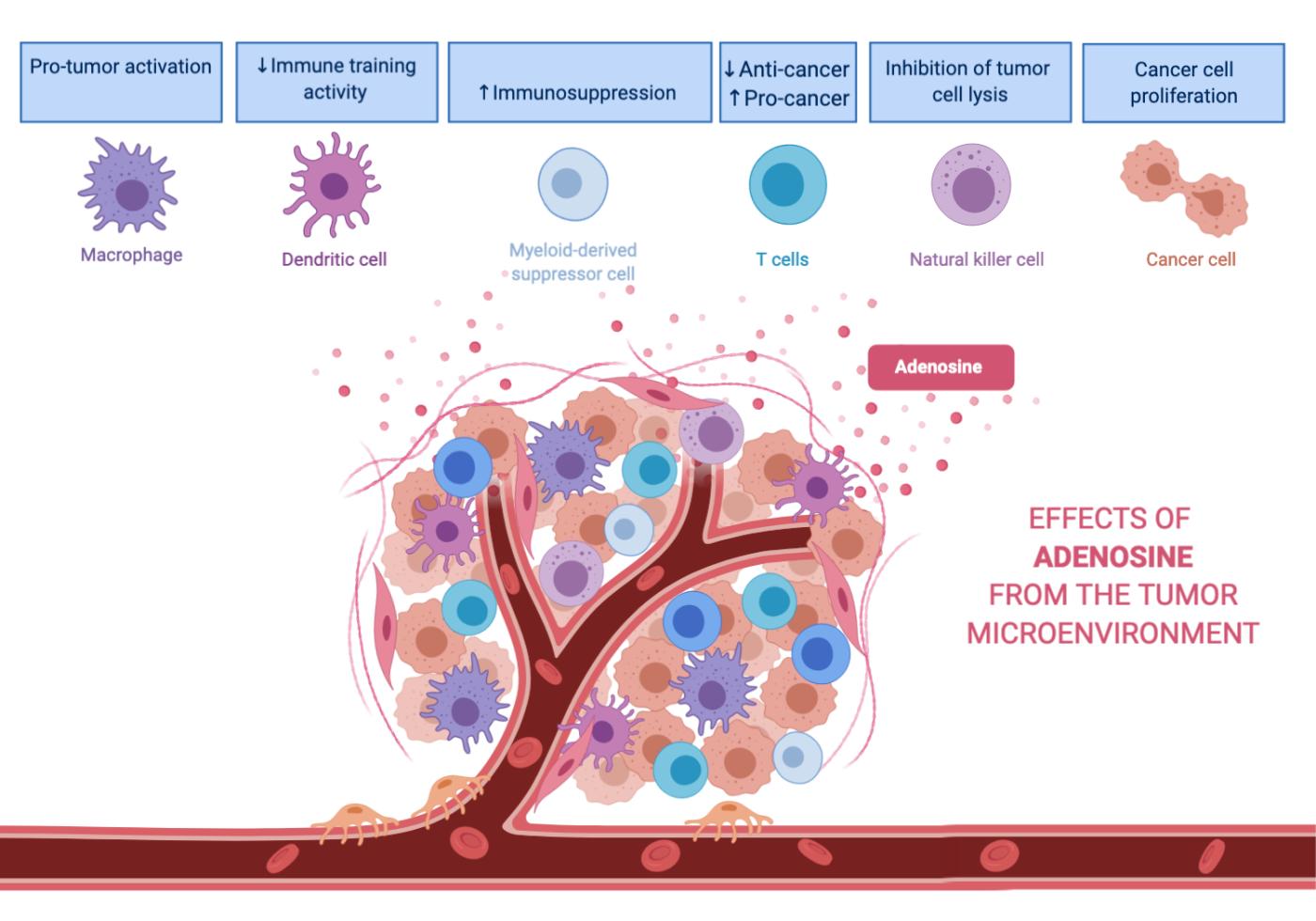 cancer benign cells