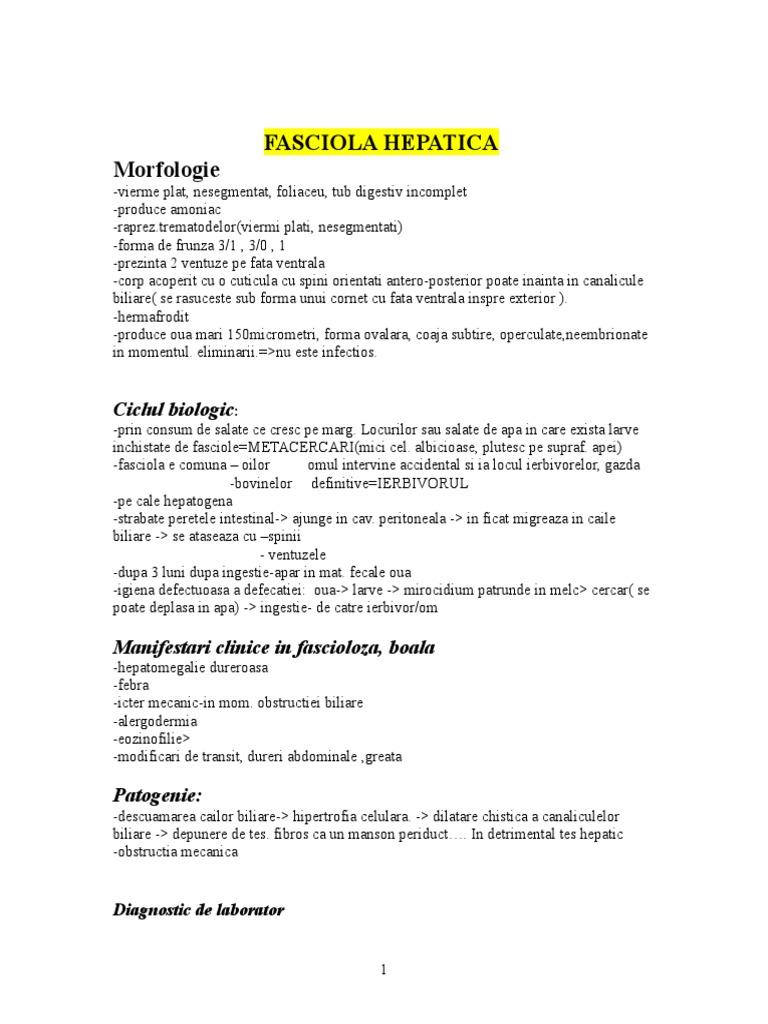 Gazde de fascioliasis - Ce este fascioliasis și medicii generaliști pentru a identifica