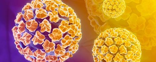 hpv virus inkubacna doba