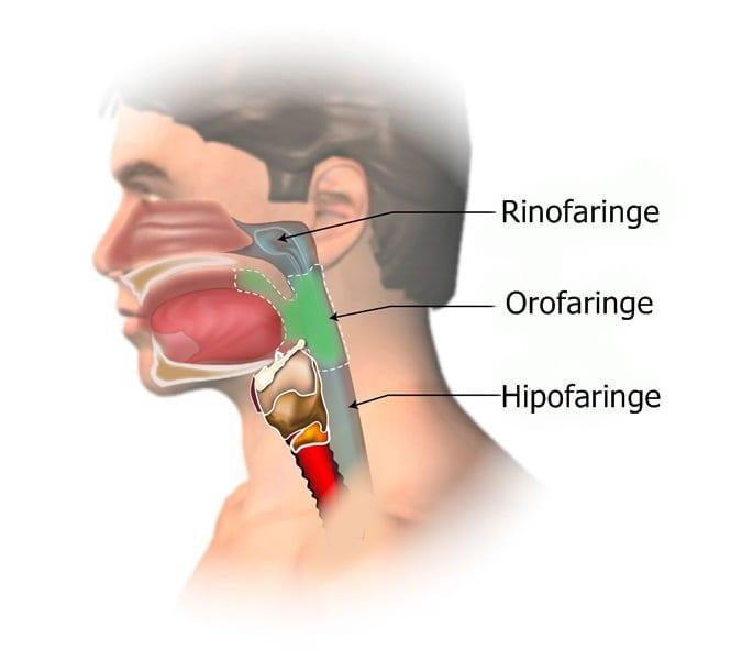 cancerul nazofaringian simptome)