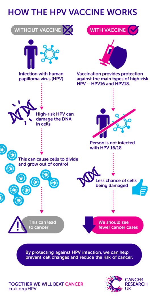 difference between human papillomavirus and cancer)