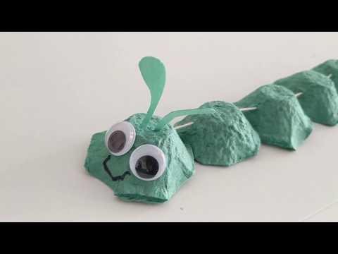 ciclul vieții bolii pinworms