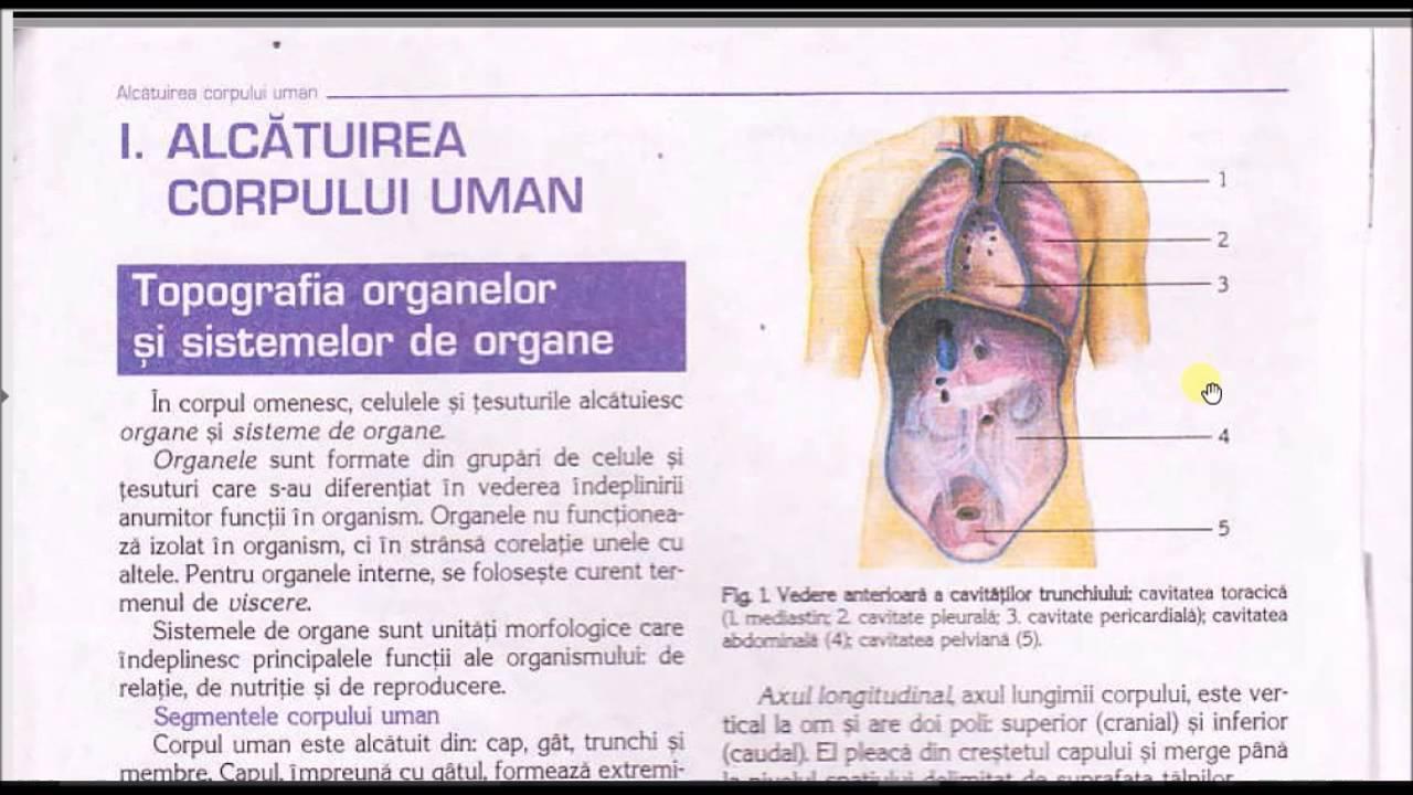 decontaminarea umană