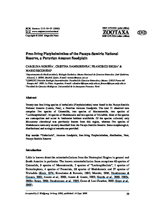 departamente de azil platyhelminthes)