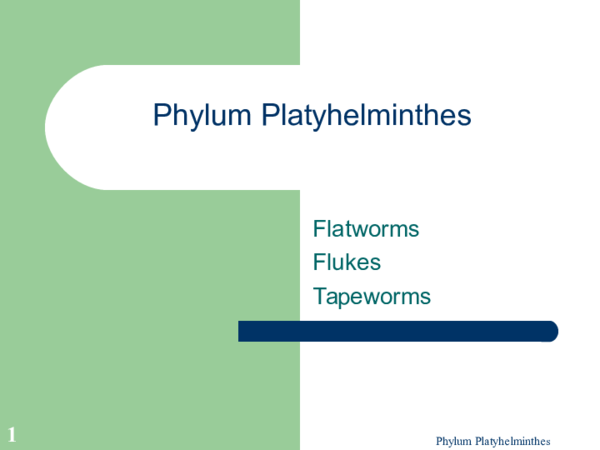 Cacing platyhelminthes. ppt, Lista de ouă și enterobioza