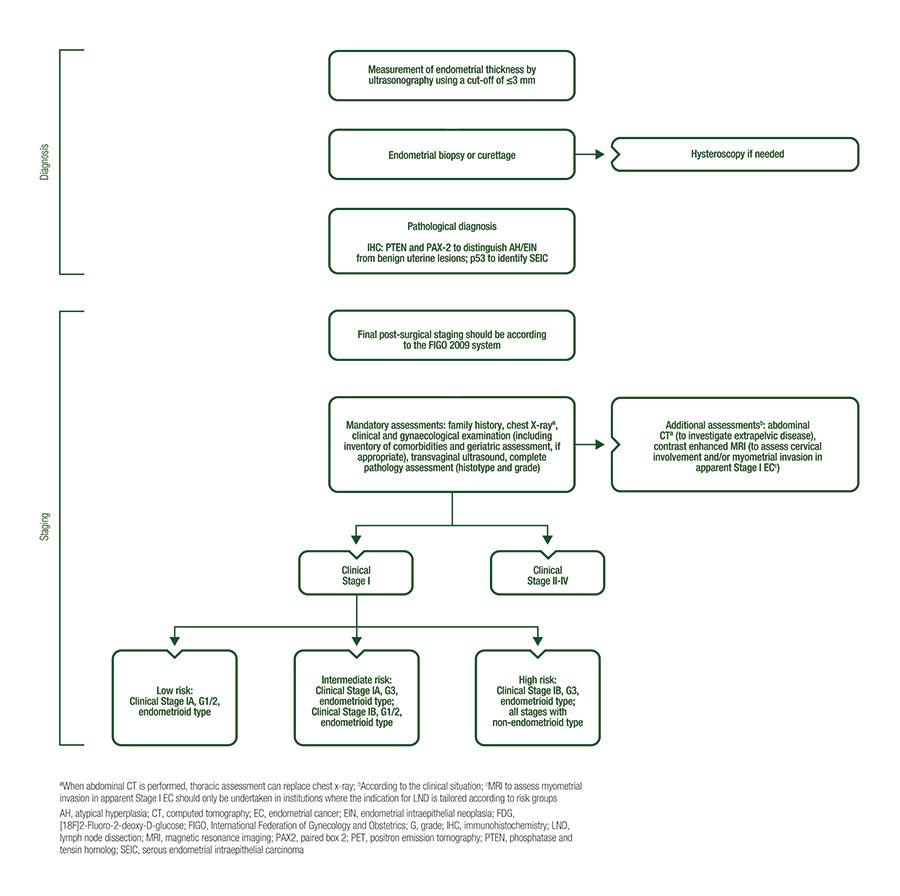 endometrial cancer treatment options