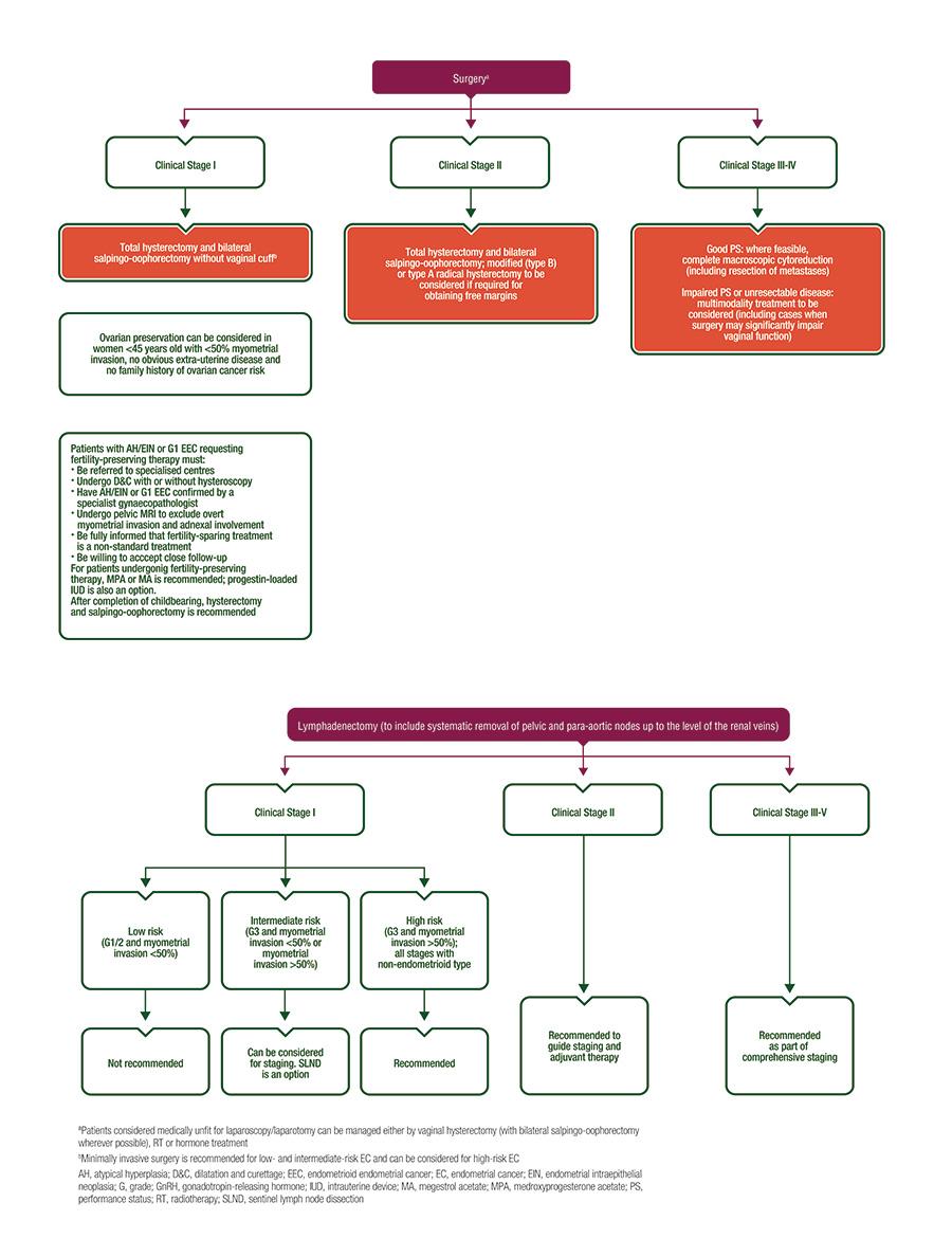 endometrial cancer new treatments)