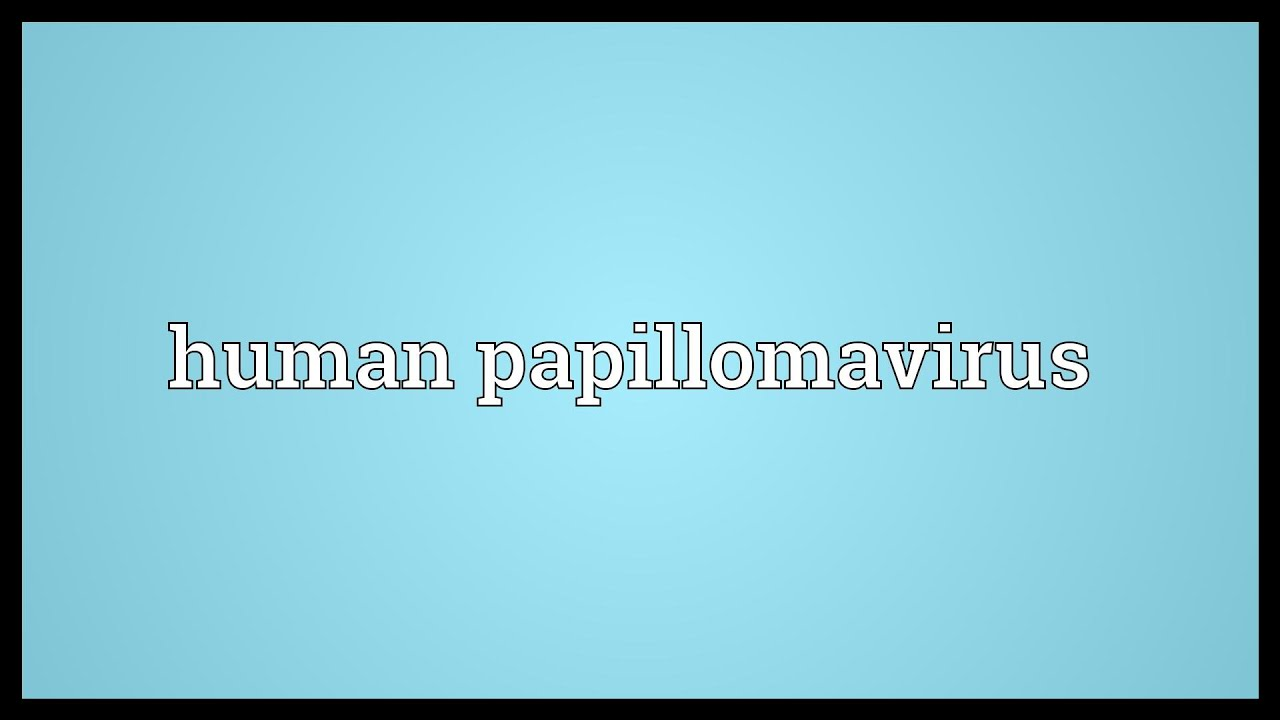 Hpv definition synonym Synonyms and antonyms of scrot in the Romanian dictionary of synonyms