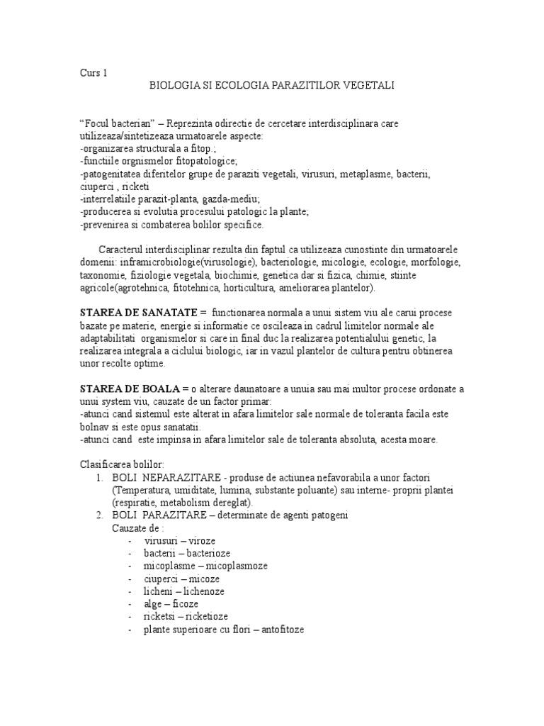 Hemoroidectomie