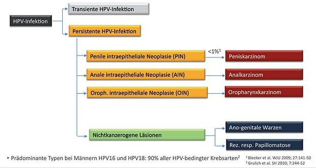 hpv impfung manner impfstoff)