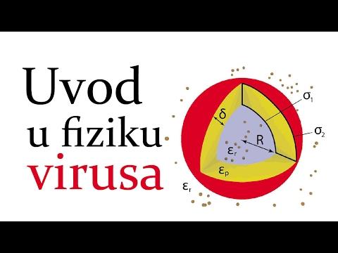jednostavni virusi)