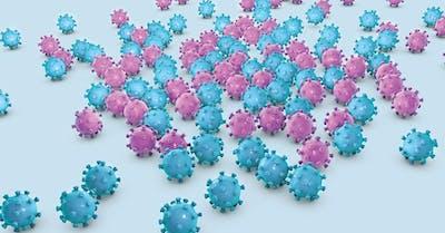 papilloma virus l uomo e a rischio