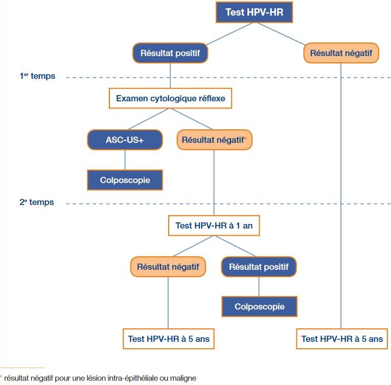 Hpv oncogene negatif Hpv virus zellveranderung
