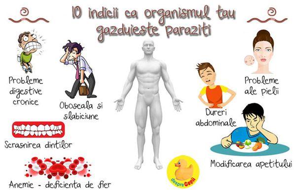 paraziți papilomați în organism